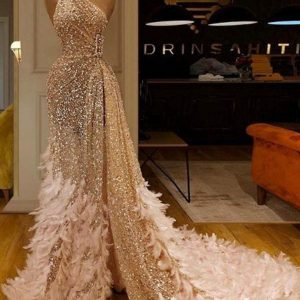 Expensive wedding reception dresses made of lace, bridal satin and feather accessory