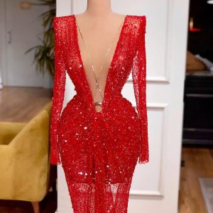 Beautiful Luxury Red Sheer Lace with Sequins & Feathers